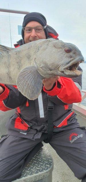 Senja Fisch 2.2.jpg