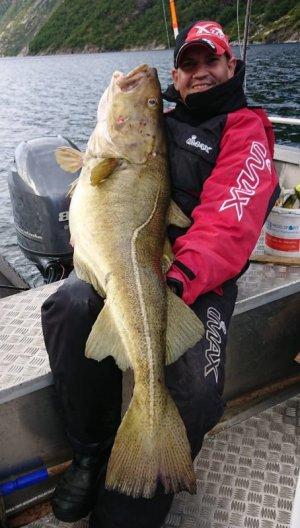 Fisch Havøysund 4jpg.jpg
